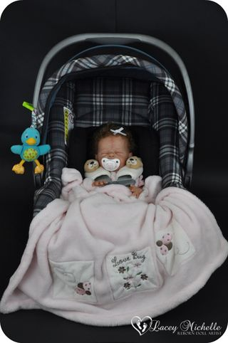 Buggy kit Bonnie Brown Lacey Michelle Reborns 3